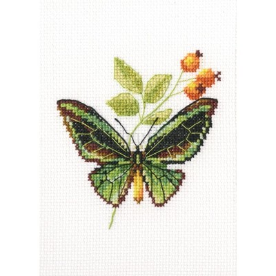 Borduurblad productfoto Vlinderborduurpakket Brair and butterfly