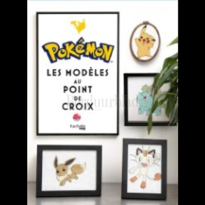 Borduurblad productfoto Borduurboek Pokémon au point de croix